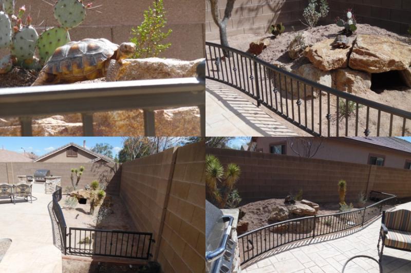 Pet Fence - Item PF0005 Wrought Iron Design In Las Vegas